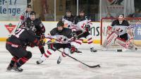 joueurs hockey crosse palet